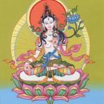 Witte Tara is een vrouwelijke Lang Leven Boeddha.
